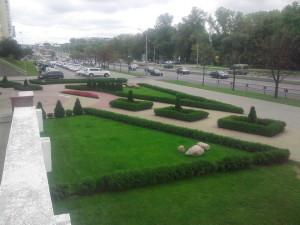 Озеленение и благоустройство территории Минск