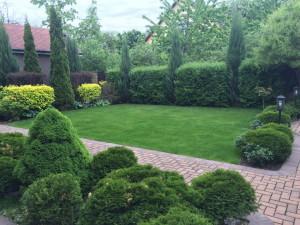 Озеленение усадьбы