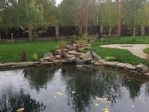 Оформить пруд во дворе